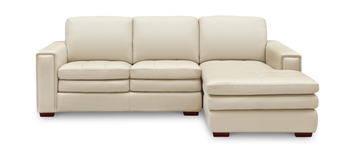 rae leather 2 piece modular sectional