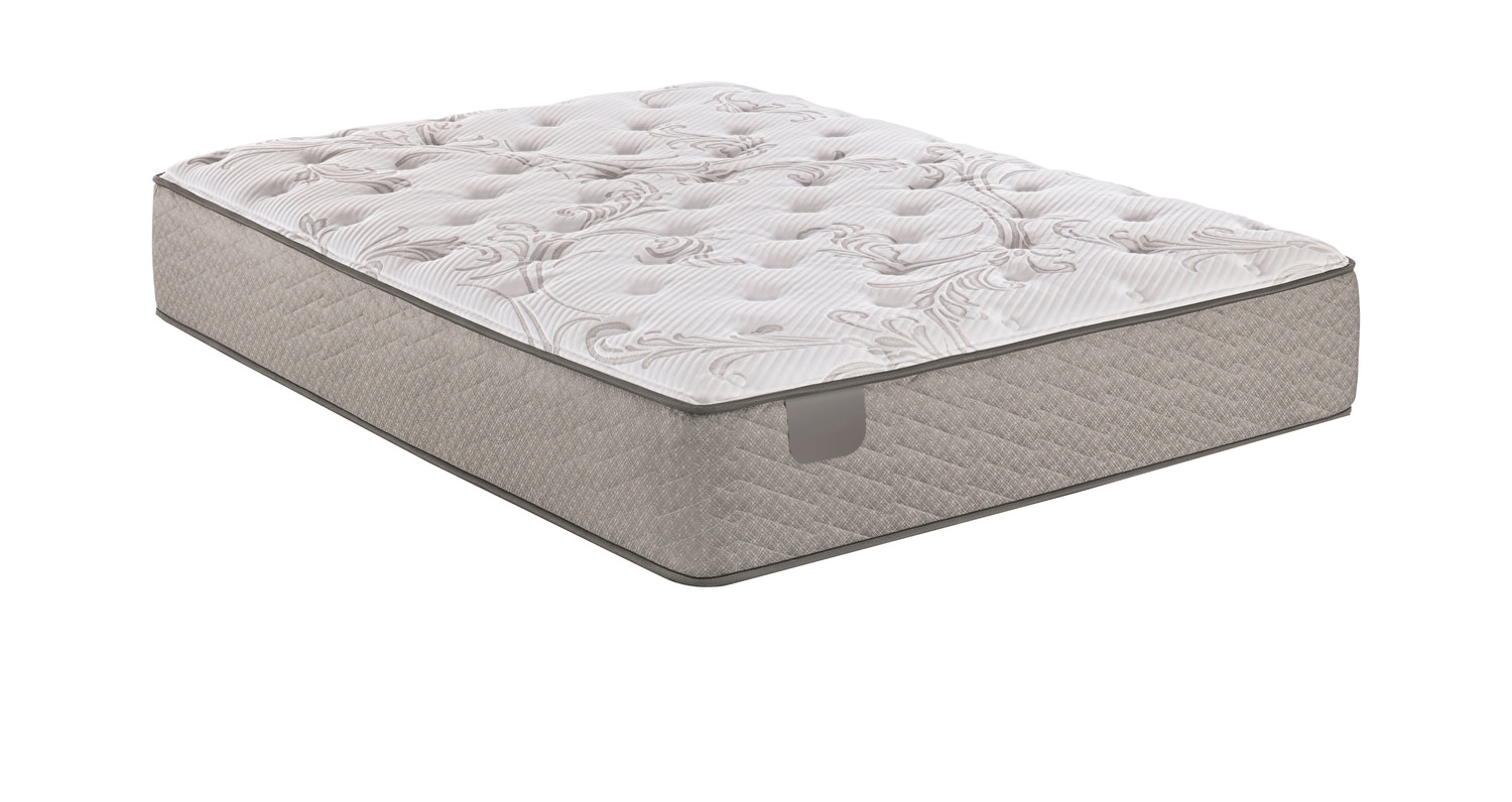 Thatcher Plush Mattress By Serta Hom Furniture
