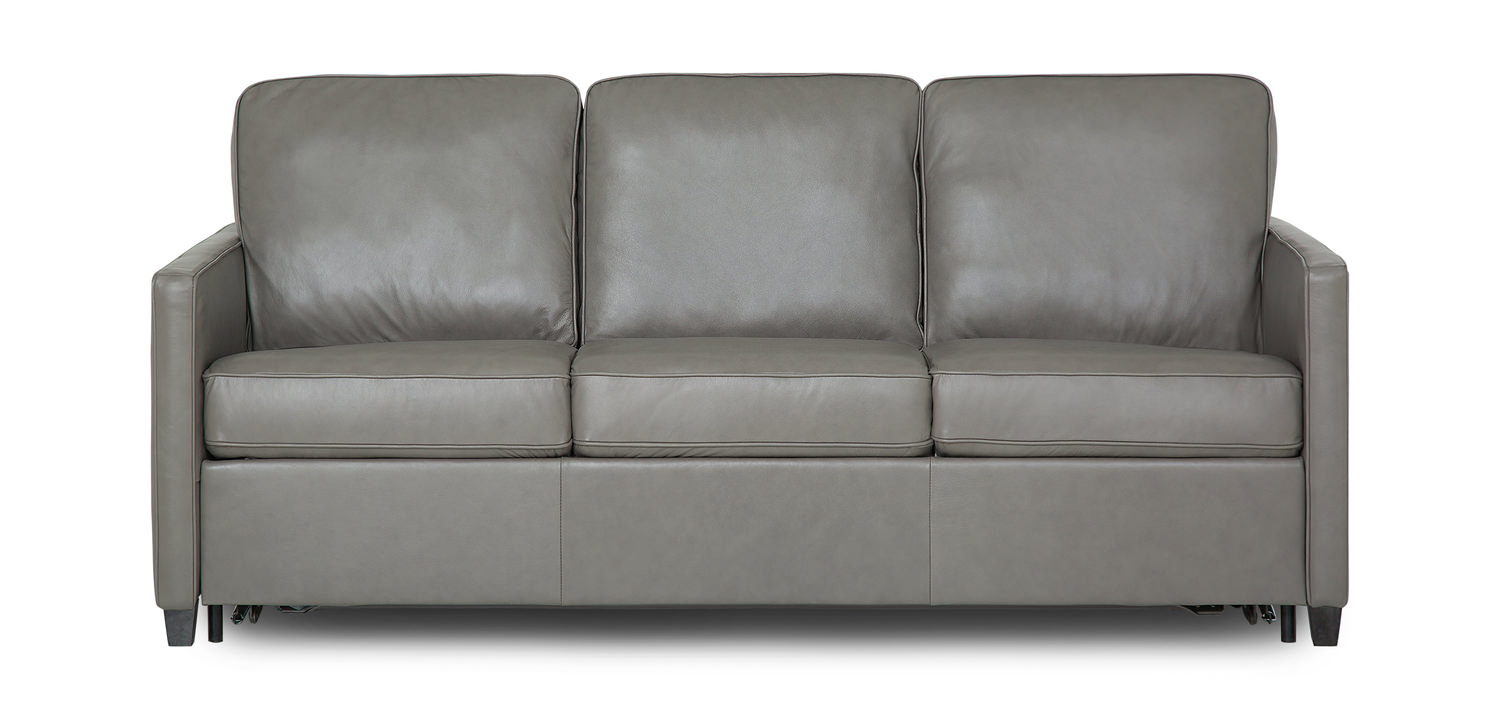 - California Leather Queen Sofa Sleeper HOM Furniture